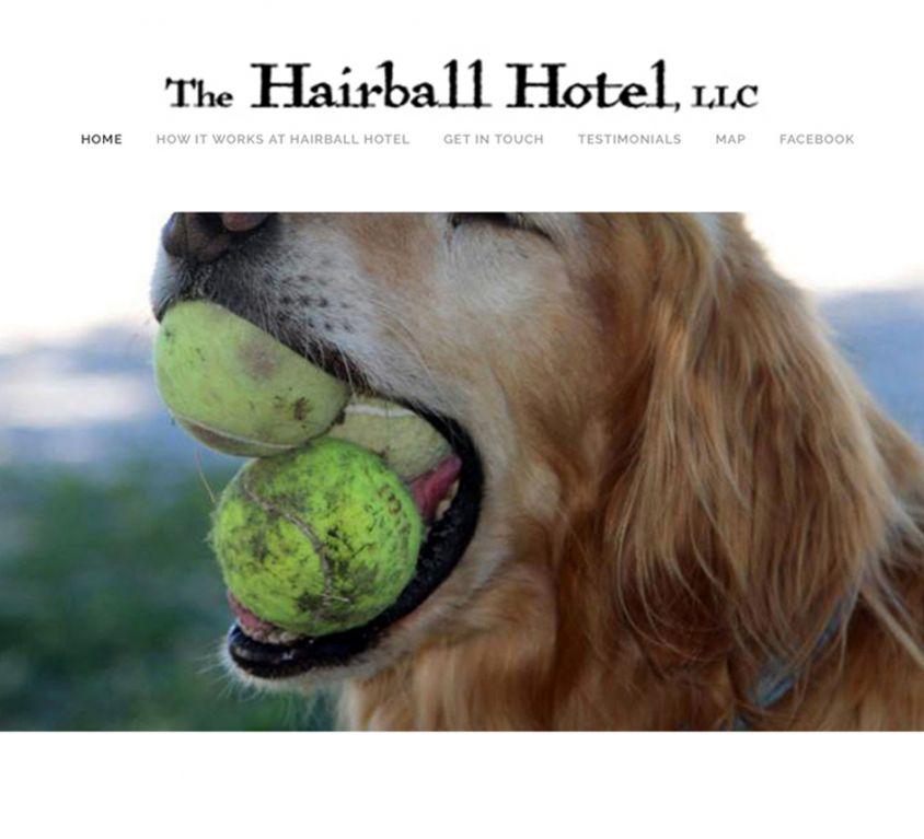 Hairball Hotel