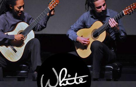 James White Guitars